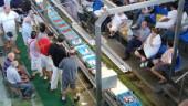 vista previa del artículo Los trabajadores de la conservera de Vigo protestan por su situación
