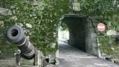 vista previa del artículo Ruta «100 minutos de naturaleza» en Vigo