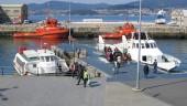 vista previa del artículo Hoteles para mascotas en Vigo