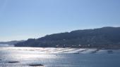 vista previa del artículo Viaje por Vigo en otoño